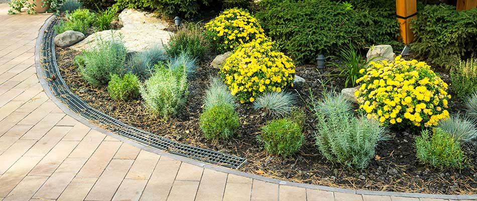 4 Landscape Bed Additions That Require Little to No Maintenance