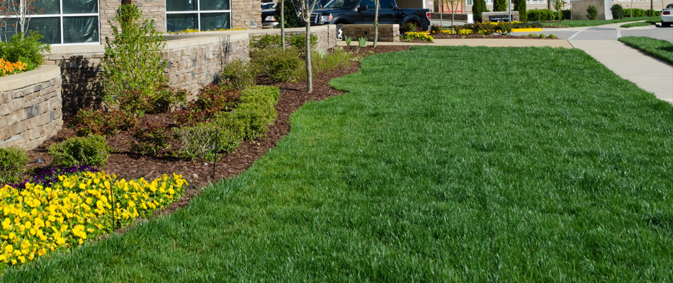 Commecial property with lawn maintenance and mowing in Granger, IN.