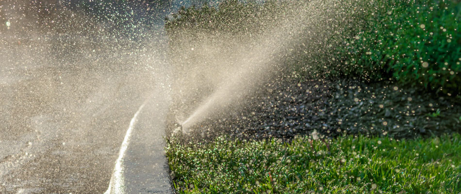 An irrigation head that we installed watering a landscape bed  Elkhart, IN.