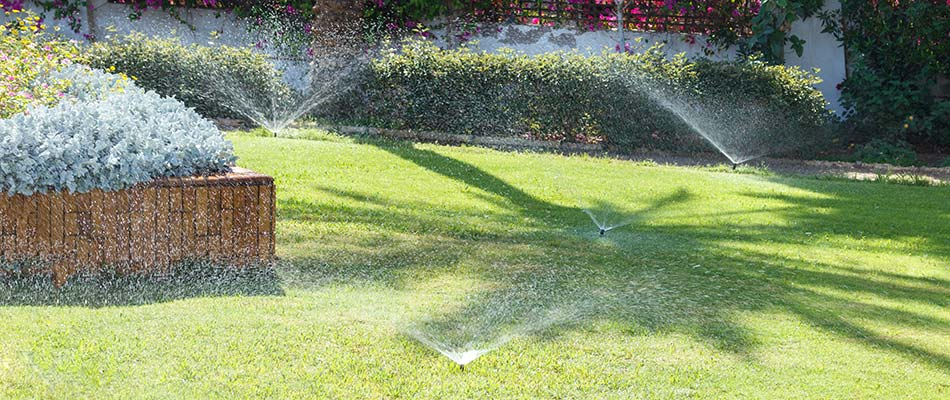 Sprinklers in a South Bend, IN lawn watering landscape plants and beds.