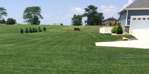 Freshly mowed and fertilized home lawn in Granger, IN.